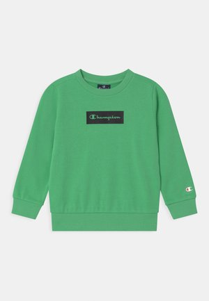 AMERICAN PASTELS CREWNECK UNISEX - Collegepaita - light green