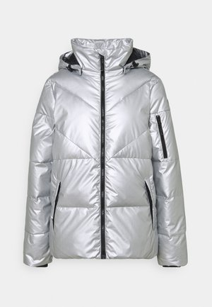 PLAINFIELD - Ski jacket - grey