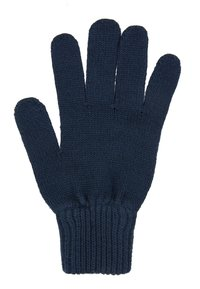 Tommy Jeans - BASIC FLAG GLOVES - Fingervantar - blue - 2