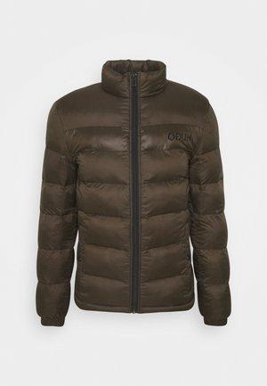 BALTO - Winter jacket - dark brown