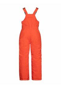 Protest - NEUTRAL  - Snow pants - orange fire - 3