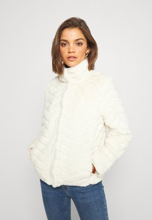 VIALIBA JACKET - Winter jacket - birch