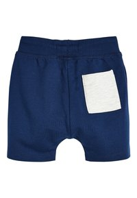 Next - 3 PACK - Shorts - blue - 2