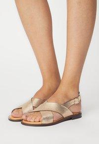 Minelli - Sandals - bronze - 0