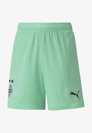 Sports shorts - green glimmer black