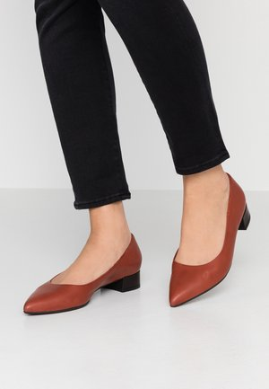 DRINA - Classic heels - rost/schwarz evenly