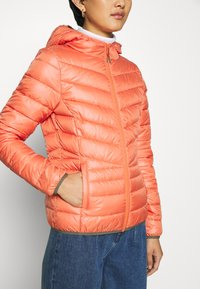 TOM TAILOR DENIM - LIGHT PADDED JACKET - Lett jakke - burnt coral - 5