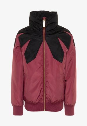 HARMONEY - Winter jacket - maroon