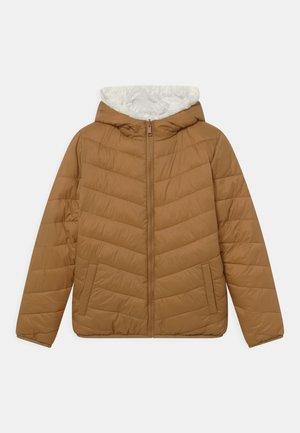 UNISEX - Zimní bunda - brown