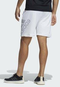 adidas Performance - 4KRFT SPORT GRAPHIC SHORTS - Träningsshorts - white - 1