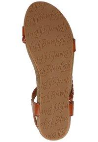 Blowfish Malibu - Sandals - scotch - 6