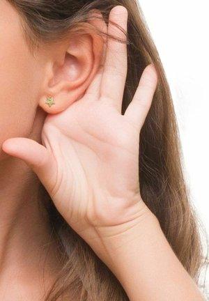 SEESTERN - Earrings - gold
