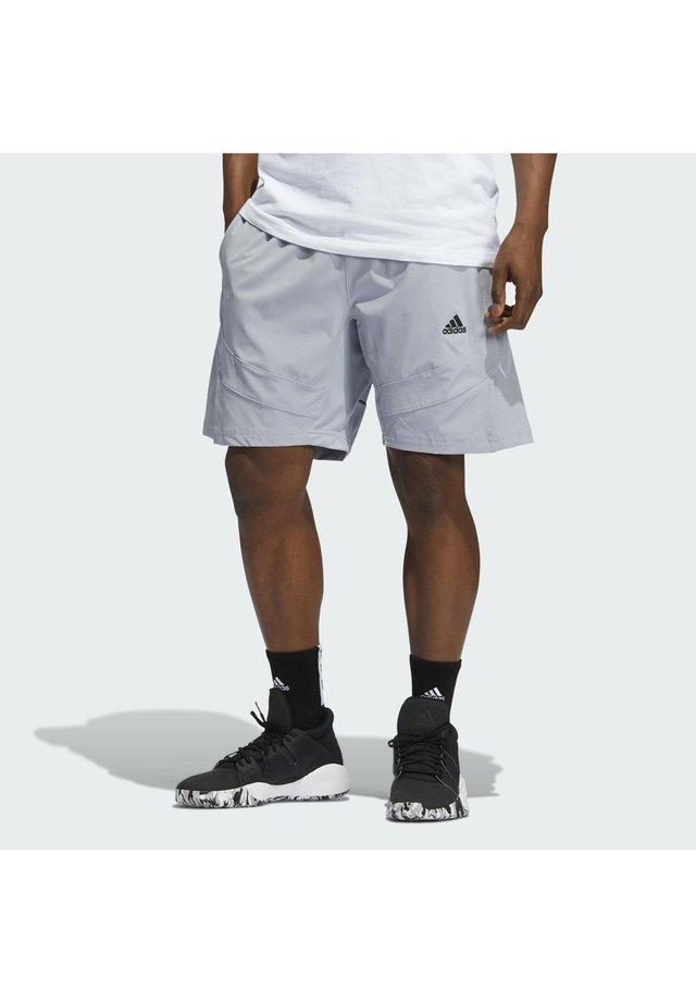 Sports shorts - silver