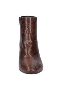 Scapa - Classic ankle boots - brown - 5