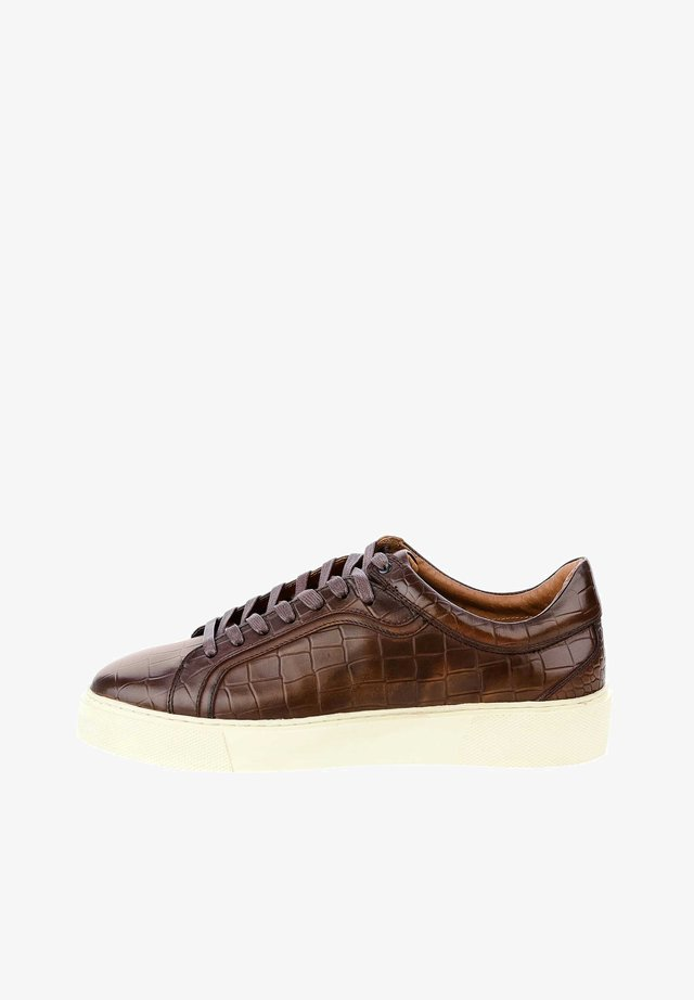 PAGNACCO - Sneakers laag - brown