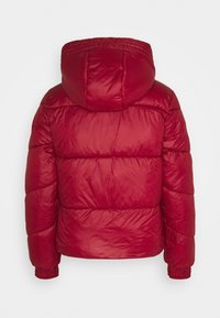 ONLY - ONLHOLLY HOODED PUFFER JACKET - Light jacket - rhubarb - 1