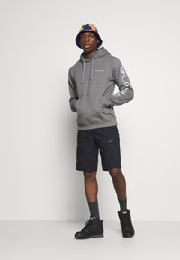 Columbia - VIEWMONTII SLEEVE GRAPHIC HOODIE - Hoodie - city grey - 1