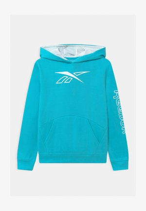 OUTLINE PILL OVER HOODIE - Hoodie - capri