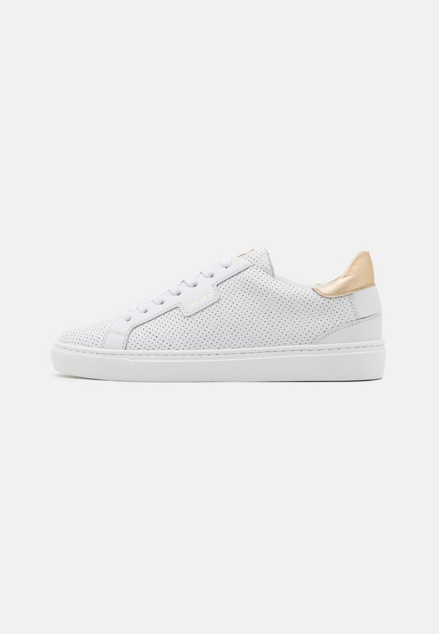 NEW SALZBURG  - Sneakers laag - white/platinum