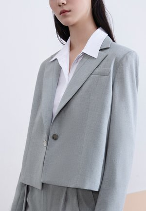 Blazer - light gray