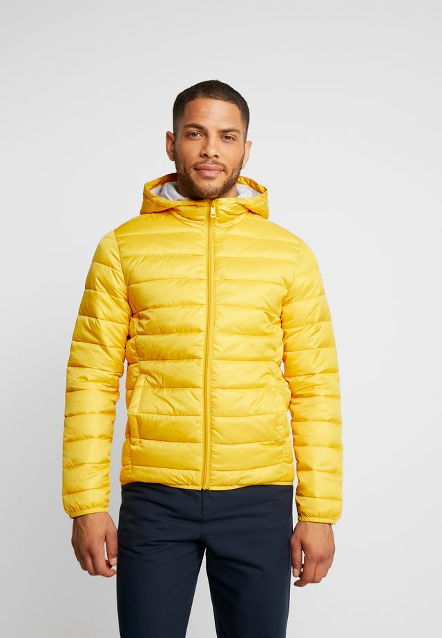 OUTERWEAR - Winter jacket - yellow