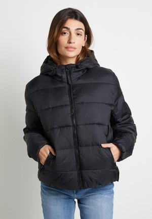 DUA LIPA X PEPE JEANS - Winter jacket - black