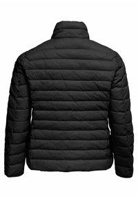 ONLY Carmakoma - Winter jacket - black - 5