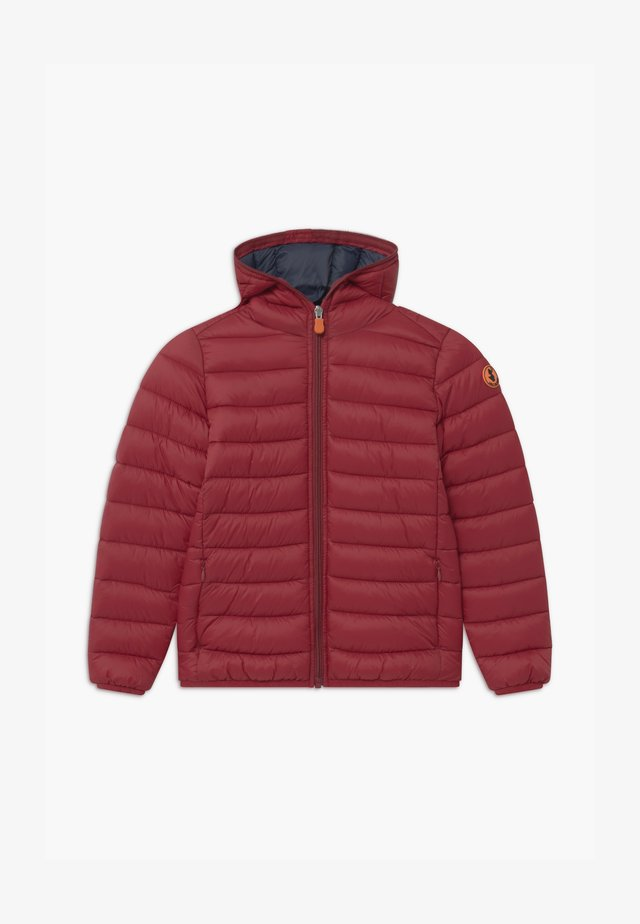 GIGAY - Winter jacket - ruby red