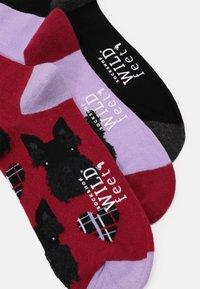 Wild Feet - SCOTTIE DOG SOCKS 3 PACK - Ponožky - multi-coloured - 1