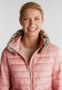 Esprit Collection - Winter jacket - old pink - 4