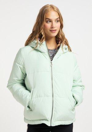 Winter jacket - minze