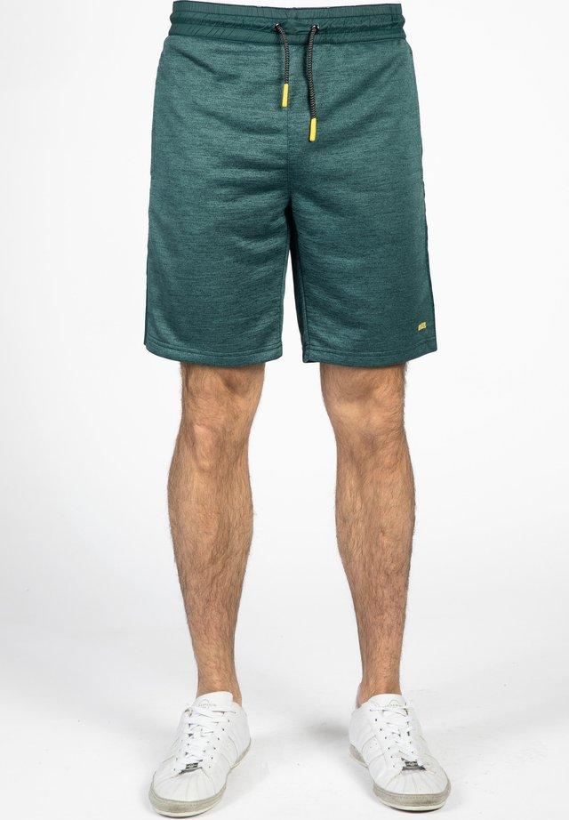 Sports shorts - petrol