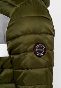 INDICODE JEANS - Winter jacket - cypress - 6