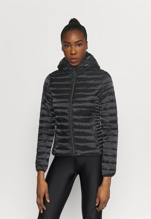 HOODED JACKET - Vinterjakke - black