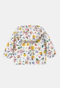 Petit Bateau - COUPE-VENT - Light jacket - marshmallow/multico - 1