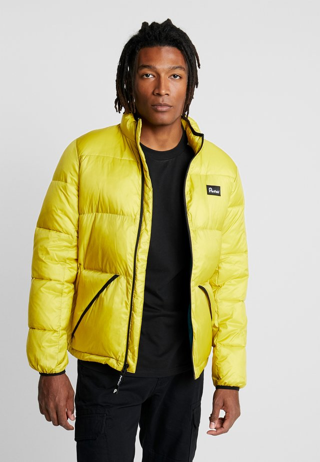 WALKABOUT - Winter jacket - citrus