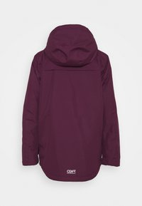COLOURWEAR - IDA JACKET - Snowboard jacket - deep red - 7