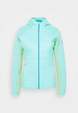 ANDRESON  - Outdoor jacket - coolaqu/claq