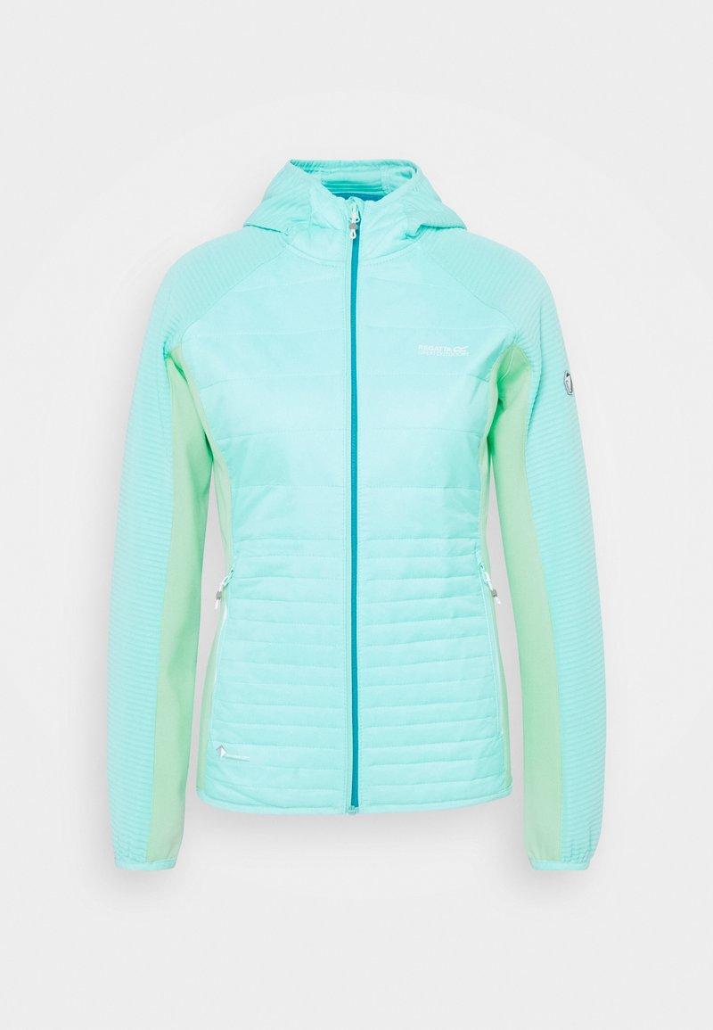 Regatta - ANDRESON  - Outdoor jacket - coolaqu/claq