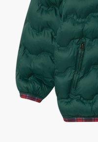Benetton - HARRY ROCKER - Winterjas - dark green - 2