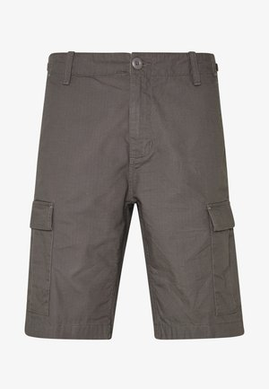 AVIATION COLUMBIA - Shorts - air force grey