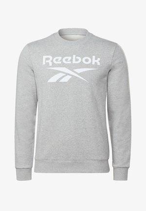 VECTOR BIG LOGO GRAPHIC SWEATSHIRT - Sweatshirt - grey