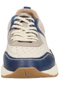 Pikolinos - Baskets basses - royal blue - 5