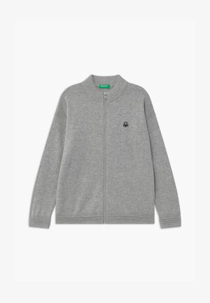 BASIC BOY - Strikjakke /Cardigans - grey
