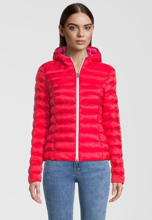 BERGEN - Winter jacket - fusion red/hot pink