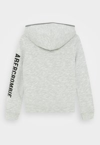 Abercrombie & Fitch - ICON SHERPA - Zip-up hoodie - grey - 1