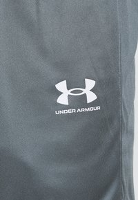 Under Armour - CHALLENGER SHORT - Sports shorts - pitch gray - 5