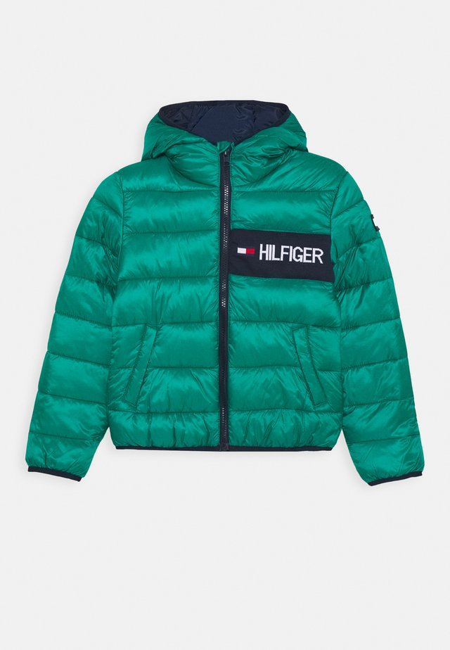 ESSENTIAL PADDED JACKET - Zimní bunda - green