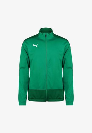 TEAMGOAL  - Training jacket - pepper green / power green