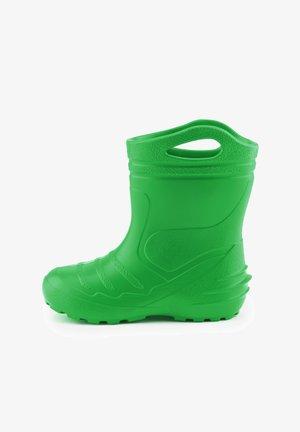 Wellies - green